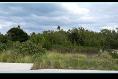 Foto de terreno habitacional en venta en avenida bonampak , supermanzana 5 centro, benito juárez, quintana roo, 4646466 No. 02