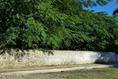 Foto de terreno comercial en renta en 50 , tizimin centro, tizimín, yucatán, 14028339 No. 02