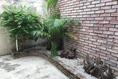 Foto de casa en renta en américa del norte , las américas, ciudad madero, tamaulipas, 0 No. 12