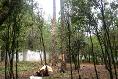 Foto de terreno habitacional en venta en  , avándaro, valle de bravo, méxico, 3219270 No. 02