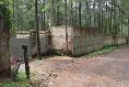 Foto de terreno habitacional en venta en  , avándaro, valle de bravo, méxico, 3219270 No. 08