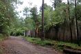 Foto de terreno habitacional en venta en  , avándaro, valle de bravo, méxico, 3219270 No. 09
