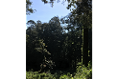 Foto de terreno habitacional en venta en  , avándaro, valle de bravo, méxico, 5648805 No. 03