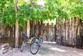 Foto de rancho en venta en avenida la selva , ejido, tulum, quintana roo, 14037669 No. 41