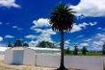 Foto de nave industrial en renta en avenida melchor ocampo , industrial, tlaxcoapan, hidalgo, 4647714 No. 01