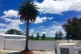 Foto de nave industrial en renta en avenida melchor ocampo , industrial, tlaxcoapan, hidalgo, 4647714 No. 06