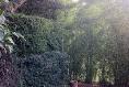 Foto de casa en venta en bosque de colomos , las cañadas, zapopan, jalisco, 13830579 No. 30