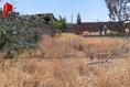 Foto de terreno habitacional en venta en calle 81 , aeropuerto, chihuahua, chihuahua, 19966908 No. 13