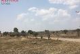 Foto de terreno industrial en venta en camino a montoro , montoro, aguascalientes, aguascalientes, 7157239 No. 09