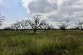 Foto de terreno habitacional en venta en camino de san isidro sn , el barranquito, cadereyta jiménez, nuevo león, 12822387 No. 11