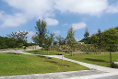 Foto de terreno habitacional en venta en  , carolco, monterrey, nuevo león, 5888812 No. 01