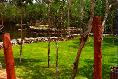 Foto de terreno habitacional en venta en carretera cafetal- mahahual , el cafetal, bacalar, quintana roo, 5326147 No. 02