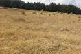 Foto de terreno comercial en venta en carretera mex-cuernavaca kilometro 31.5 , san miguel topilejo, tlalpan, df / cdmx, 8867692 No. 09