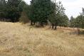 Foto de terreno comercial en venta en carretera mex-cuernavaca kilometro 31.5 , san miguel topilejo, tlalpan, df / cdmx, 8867692 No. 01