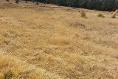 Foto de terreno comercial en venta en carretera mex-cuernavaca kilometro 31.5 , san miguel topilejo, tlalpan, df / cdmx, 8867692 No. 06