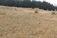 Foto de terreno comercial en venta en carretera mex-cuernavaca kilometro 31.5 , san miguel topilejo, tlalpan, df / cdmx, 8867692 No. 07