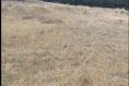 Foto de terreno comercial en venta en carretera mex-cuernavaca kilometro 31.5 , san miguel topilejo, tlalpan, df / cdmx, 8867692 No. 08