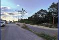 Foto de terreno habitacional en venta en  , cholul, mérida, yucatán, 14027442 No. 04