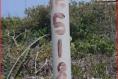 Foto de terreno habitacional en venta en  , dzemul, dzemul, yucatán, 6172836 No. 05