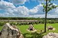 Foto de terreno habitacional en venta en  , dzidzilché, mérida, yucatán, 5881840 No. 07