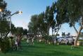 Foto de terreno habitacional en venta en entreparques , algarrobos desarrollo residencial, mérida, yucatán, 20756752 No. 08