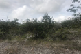 Foto de terreno habitacional en venta en faisan , felipe carrillo puerto centro, felipe carrillo puerto, quintana roo, 5285108 No. 08