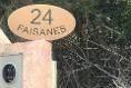 Foto de terreno habitacional en venta en faisan , felipe carrillo puerto centro, felipe carrillo puerto, quintana roo, 5285108 No. 09