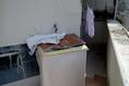 Foto de local en renta en  , francisco i madero, carmen, campeche, 8391976 No. 08