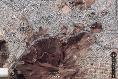 Foto de terreno comercial en renta en  , francisco r almada, chihuahua, chihuahua, 5872028 No. 01