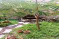 Foto de casa en venta en  , guanajuato centro, guanajuato, guanajuato, 19551782 No. 26