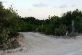Foto de terreno habitacional en venta en  , isla mujeres, isla mujeres, quintana roo, 3088167 No. 02