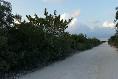 Foto de terreno habitacional en venta en  , isla mujeres, isla mujeres, quintana roo, 3088167 No. 09