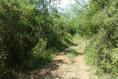 Foto de terreno habitacional en venta en ismael flores cantú , san roque, juárez, nuevo león, 10676738 No. 02