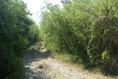 Foto de terreno habitacional en venta en ismael flores cantú , san roque, juárez, nuevo león, 10676738 No. 06