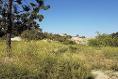 Foto de terreno habitacional en venta en kilometro 10 de la carretera tecate-ensenada , hacienda tecate, tecate, baja california, 13406352 No. 02