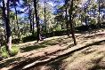 Foto de rancho en venta en kilometro 22 de la carretera guadalajara-tapalpa 3 kilómetros 22, san martin, tapalpa, jalisco, 5886922 No. 19