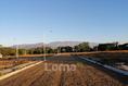 Foto de terreno habitacional en venta en  , la cañada, comala, colima, 0 No. 04