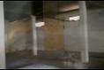 Foto de nave industrial en renta en  , la carolina, cuernavaca, morelos, 6170064 No. 03