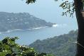 Foto de terreno habitacional en venta en  , la cima, acapulco de juárez, guerrero, 5288533 No. 01