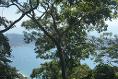 Foto de terreno habitacional en venta en  , la cima, acapulco de juárez, guerrero, 5288533 No. 03