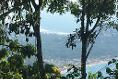 Foto de terreno habitacional en venta en  , la cima, acapulco de juárez, guerrero, 5288533 No. 04