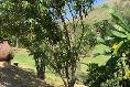 Foto de casa en venta en la noria , las cañadas, zapopan, jalisco, 8896455 No. 46