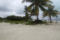 Foto de terreno habitacional en venta en  , mar caribe, isla mujeres, quintana roo, 5879524 No. 03