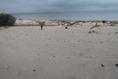 Foto de terreno habitacional en venta en  , mar caribe, isla mujeres, quintana roo, 5879524 No. 06