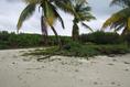 Foto de terreno habitacional en venta en  , mar caribe, isla mujeres, quintana roo, 5879524 No. 07