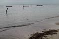 Foto de terreno habitacional en venta en  , mar caribe, isla mujeres, quintana roo, 5879524 No. 08