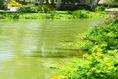 Foto de departamento en venta en mayan lakes , playa diamante, acapulco de juárez, guerrero, 0 No. 11
