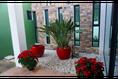 Foto de casa en venta en  , méxico norte, mérida, yucatán, 12764284 No. 14