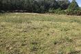 Foto de terreno habitacional en venta en  , jesús maría monte alto, villa victoria, méxico, 5445288 No. 11