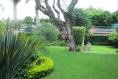 Foto de casa en venta en  , palmira tinguindin, cuernavaca, morelos, 6213566 No. 06